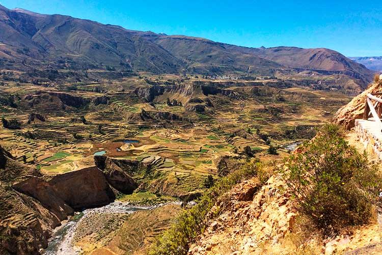 private tour in peru destinations colca canyon