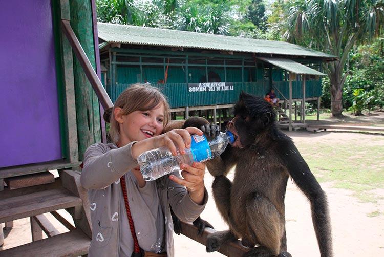 peruvian amazon activities nature lovers