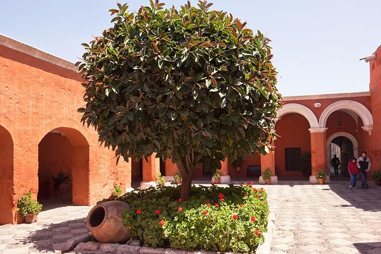 monasterio de santa catalina within the buildings in arequipa